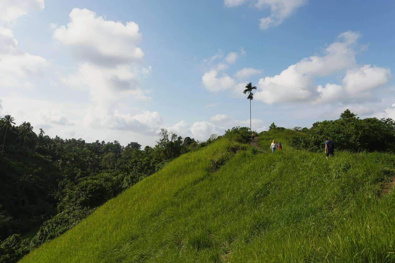Walking The Campuhan Ridge Walk To Ubud Town